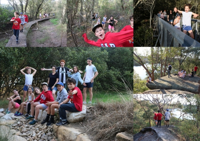 2017-11-24 Kings Way bushwalk 1200px