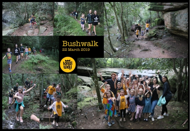 Kings Way bushwalk March 2019 900px
